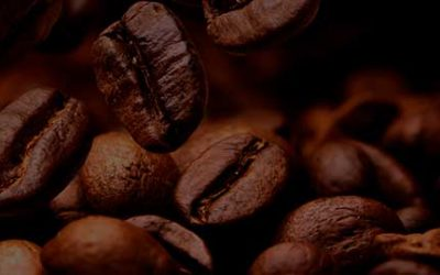 6TH BRAZILIAN SPECIALTY COFFEE MISSION