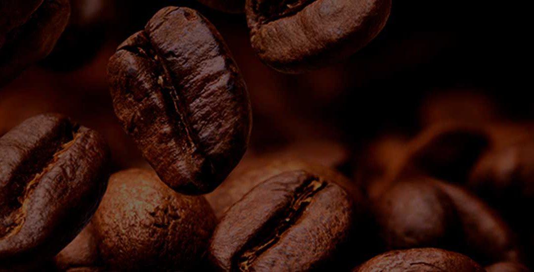 6TH BRAZILIAN SPECIALTY COFFEE MISSION