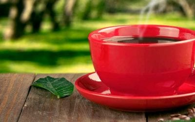 Du café au week-end dans le parc, une Chambre de plus en plus internationale