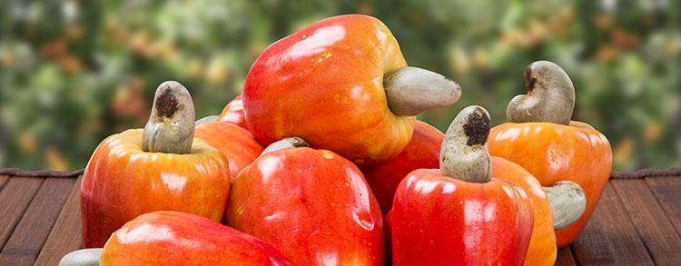 Canadá: mercado promissor para frutas brasileiras